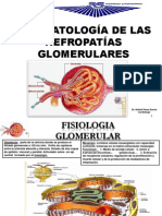 Fispa de Las Nefrop Glom (1)