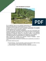 Expocicion Geologia Medios Fluviales