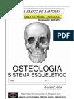Apostila Sistema Esqueletico - Anatomia Pura