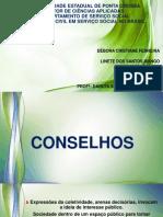 Universidade Estadual de Ponta Grossa Conselhos