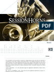 Session Horns Manual English