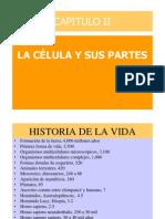 15675856 La Celula y Partes