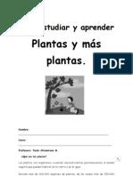 Guía de aprendizaje, las plantas 2013