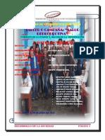 Las Poderosas_Recojo de información_ Lea Quispe Moreno.