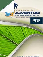 Reglamento Juventud PNP 2010-2014