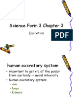 Chapter 3 Excreation