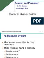 Bio221Lec10_Skeletal Muscle I