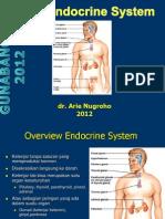 Anatomi Fisiologi ENDOKRIN Untuk 2 Pertemuan