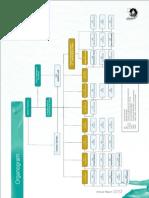 Organo-OGDCL FInal Raport 2012