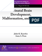 Perinatal Brain Development, Malformation and Injury