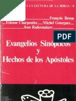 Evangelios sinópticos y hechos de loa apóstoles. Joseph Auneau y otros