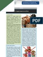 ARTICULO ESPECIAL - El Trabajo Infantil en el Perú