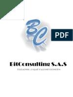 BITCONSULTING S.a.S - Plan de Negocios - Informe Final