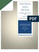 Guia Sobre Ms