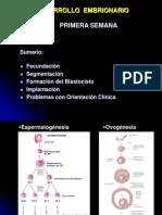 Desarrollo Embrionario 1ra Sem