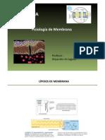 Fisiologia de Membrana Clase 3