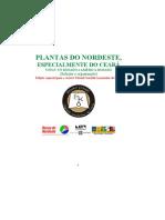 Plantas Do Nordeste, Especialmente Do Ceara