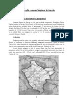 Monografia comunei suplacu de barcău PDF