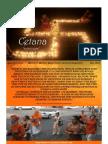 WWD Newsletter - June 2013