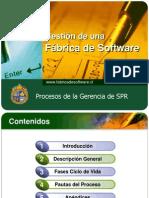 20081029 SPR PresentacionProcesoSPR Rnundurr v0.2