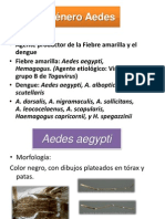 39.Dengue -Aedes 2010 - Copy