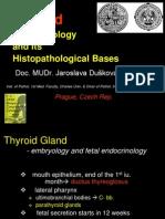 tiroid biologi
