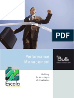 Bull Performance Reports for Capacity Management