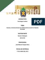 La Delicuencia Juvenil en La Republica Dominicana