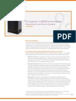 Encryption NAS Environments WP (en) v2 Web
