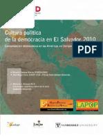 2010-culturapolitica2