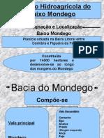 Baixo Mondego