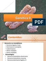 24.-Genética II 2013 final