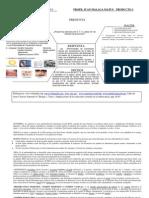 Diagrama Heurístico versión         8