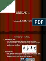 Unidad1 Movimiento y Postura
