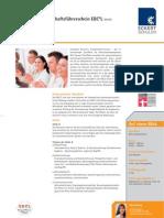 08252_DB_Europaeischer_Wirtschaftsfuehrerschein_EBCL_120110_web.pdf