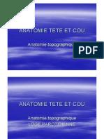 Anatomie Tete Et Cou - Toppographique