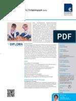08206_DB_Bachelor_of_Arts_BA_Fruehpaedagogik_130610_web.pdf