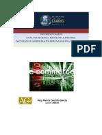 E-commerce y E-business.pdf
