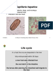 Tropis_Tissue helminth6_capillaria, fasciola.pdf