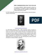 Breve Historia Cond. Dna y Ciclo Cllr