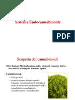 Cannabinoidi PDF