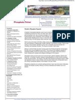 Phosphate Primer