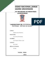 LAB 08 - DETERMINACIÓN DE PROTEÍNAS. BIURETdoc
