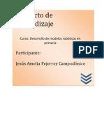 Proyecto Medidas Preventivas Hidrojet