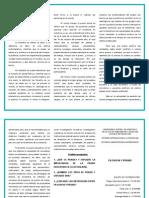 Triptico Resumen de Filosofia y Praxis-equipo 2