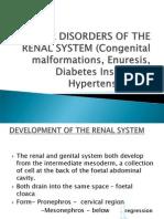 Renal Lecture 2 Congenital Anomalies