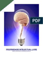 PROPRIEDADE INTELECTUAL LIVRE (PIL) - SILVA JR., Nelmon J.