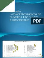 1  TEMAS MATEMATICA APLICADA  conceptos basicos de N° R y IR.ppt