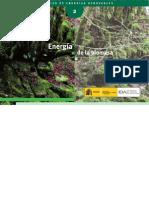 Manual Energia de La Biomasa