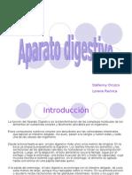 Aparato digestivo_Lorena_Stefanny_08-09